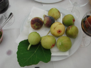 Italian Counrtyside Vacation Figs - Italian Heritage Tours